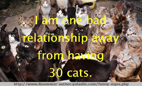 Funny pet sign - I am one bad relationship away from 30 cats.