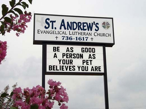 Funny church sign - be as good as your pet believes you are.