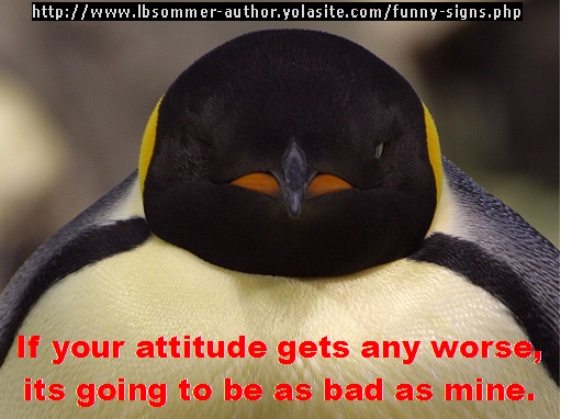 If your attitude gets any worse, it's going to be as bad as mine.