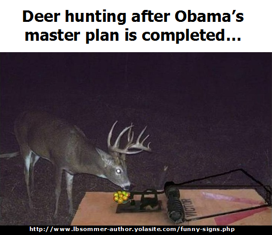 Funny but true sign about gun control = Deer hunting after Obama's master plan is completed. http://www.lbsommer-author.yolasite.com/gun-signs.php