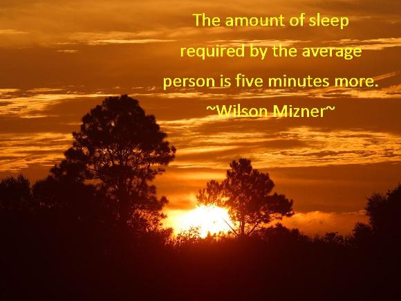 A funny Wilson Mizner quote - the amount of sleep required by the average person is five minutes more.